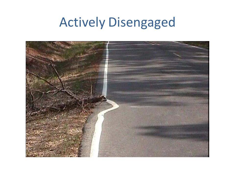 Actively Disengaged