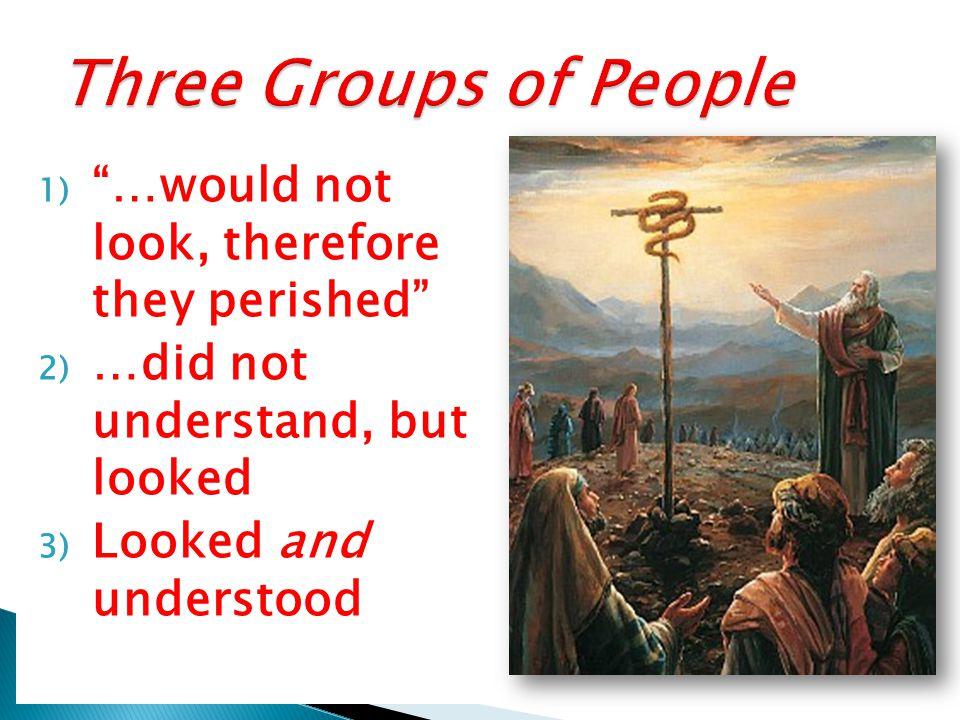 Alma 32: 28 Alma 33:19 I Nephi 17:41 Alma 37:38 …the simpleness of the way… 'Types of Christ Seeds Brazen Serpent Liahona