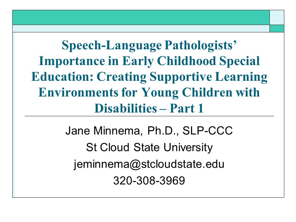 Speech-Language Pathologists' Importance in Early Childhood Special Education: Creating Supportive Learning Environments for Young Children with Disab