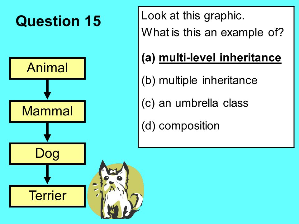 Question 15 Animal Mammal Dog Terrier Look at this graphic. What is this an example of? (a)multi-level inheritance (b)multiple inheritance (c)an umbre