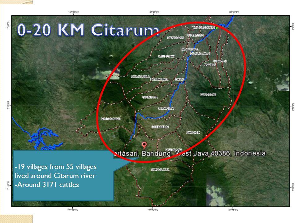 -19 villages from 55 villages lived around Citarum river -Around 3171 cattles