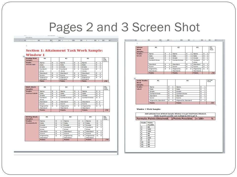 Pages 2 and 3 Screen Shot