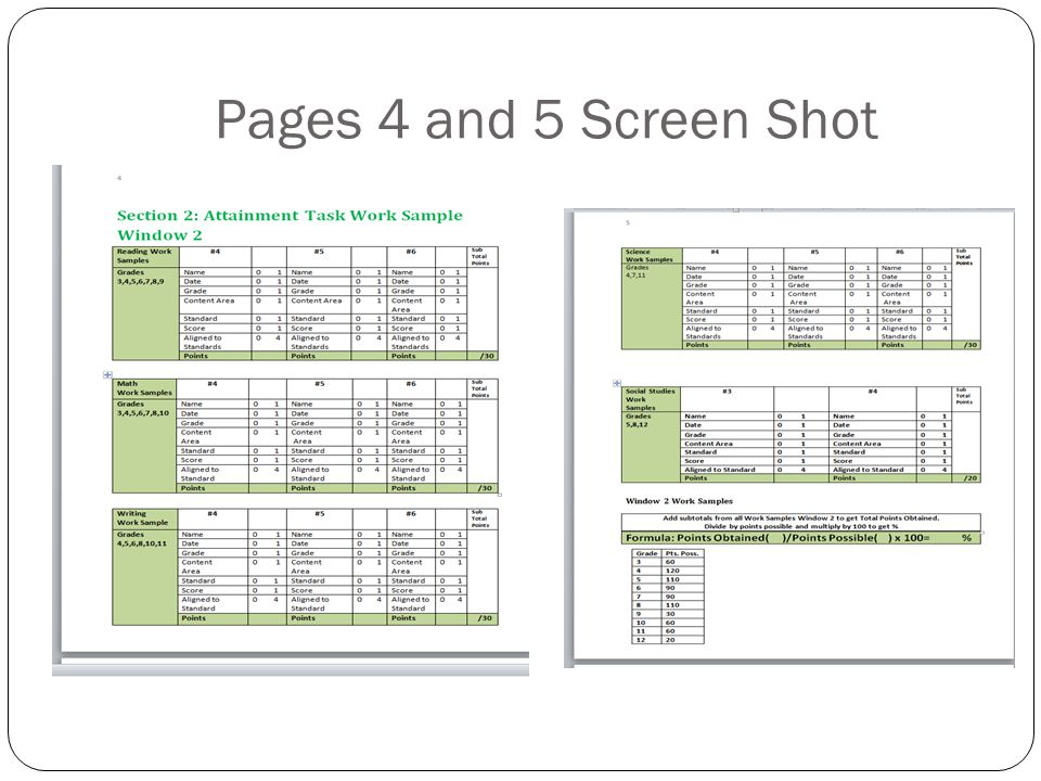 Pages 4 and 5 Screen Shot