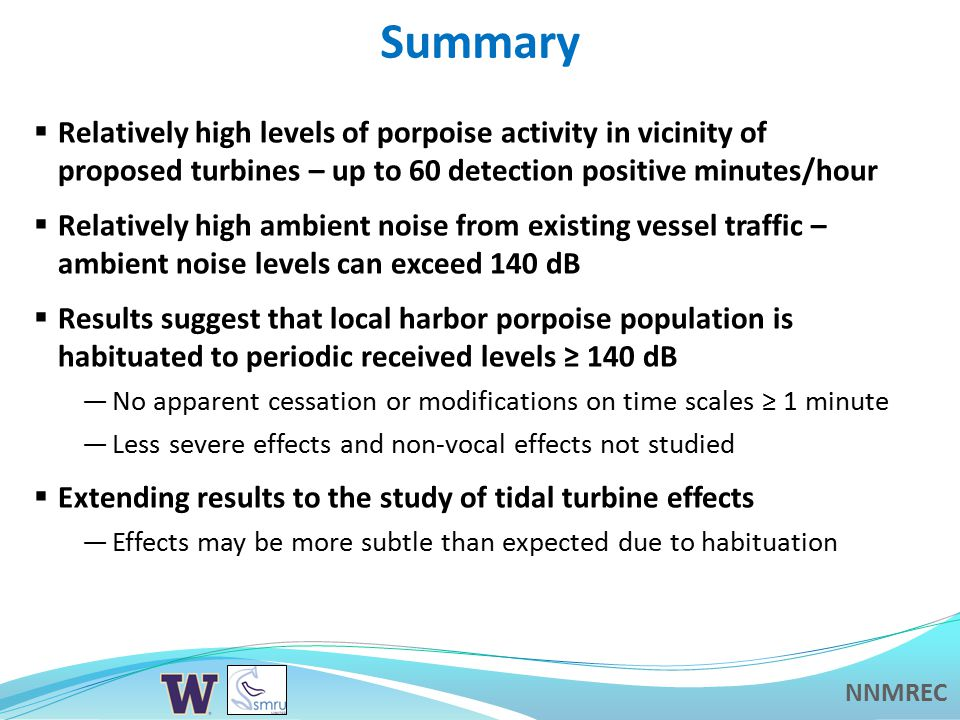 NNMREC Summary  Relatively high levels of porpoise activity in vicinity of proposed turbines – up to 60 detection positive minutes/hour  Relatively high ambient noise from existing vessel traffic – ambient noise levels can exceed 140 dB  Results suggest that local harbor porpoise population is habituated to periodic received levels ≥ 140 dB —No apparent cessation or modifications on time scales ≥ 1 minute —Less severe effects and non-vocal effects not studied  Extending results to the study of tidal turbine effects —Effects may be more subtle than expected due to habituation