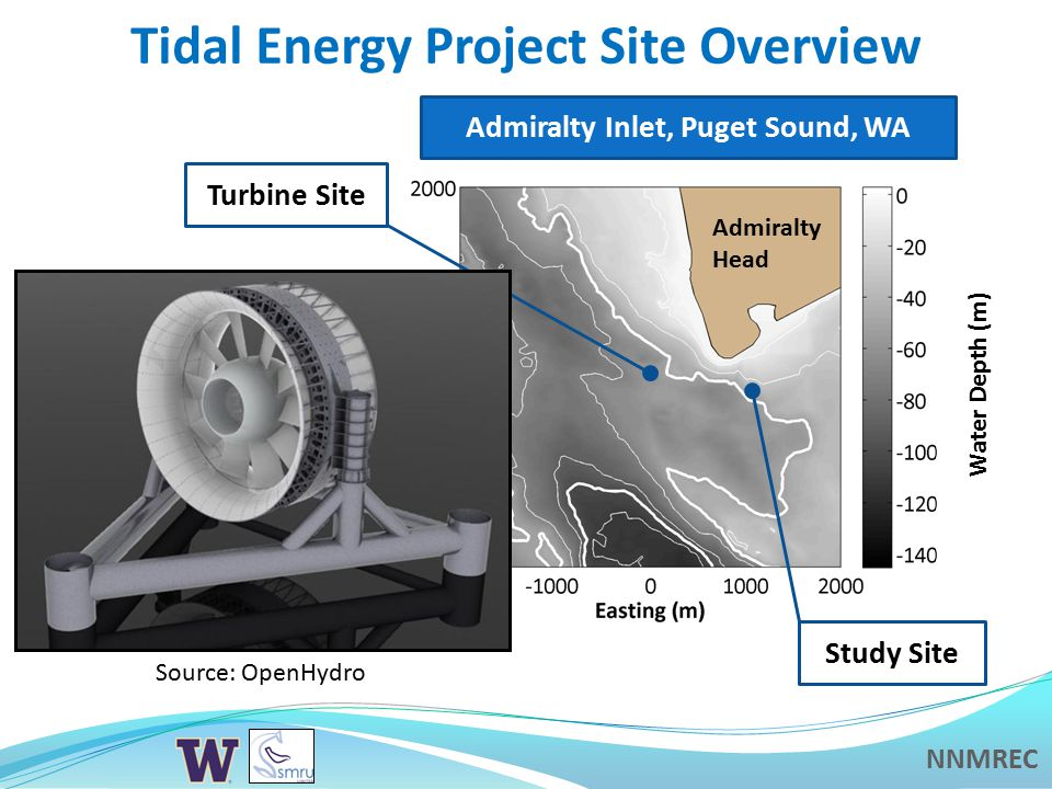 NNMREC Study Motivation  Acoustic effects of tidal energy projects on marine mammal behavior are not well-understood  High relative abundance of harbor porpoise in project area —Post-installation, use as a marker species  Evaluate pre-installation species response to existing anthropogenic noise sources —Investigate habituation – received noise levels do not uniquely determine species response (e.g., Southall et al.