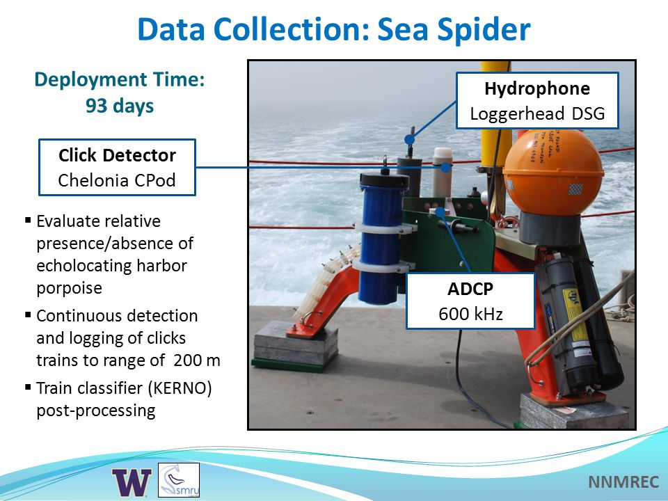 NNMREC Data Collection: Sea Spider  Evaluate relative presence/absence of echolocating harbor porpoise  Continuous detection and logging of clicks trains to range of 200 m  Train classifier (KERNO) post-processing Deployment Time: 93 days ADCP 600 kHz Hydrophone Loggerhead DSG Click Detector Chelonia CPod