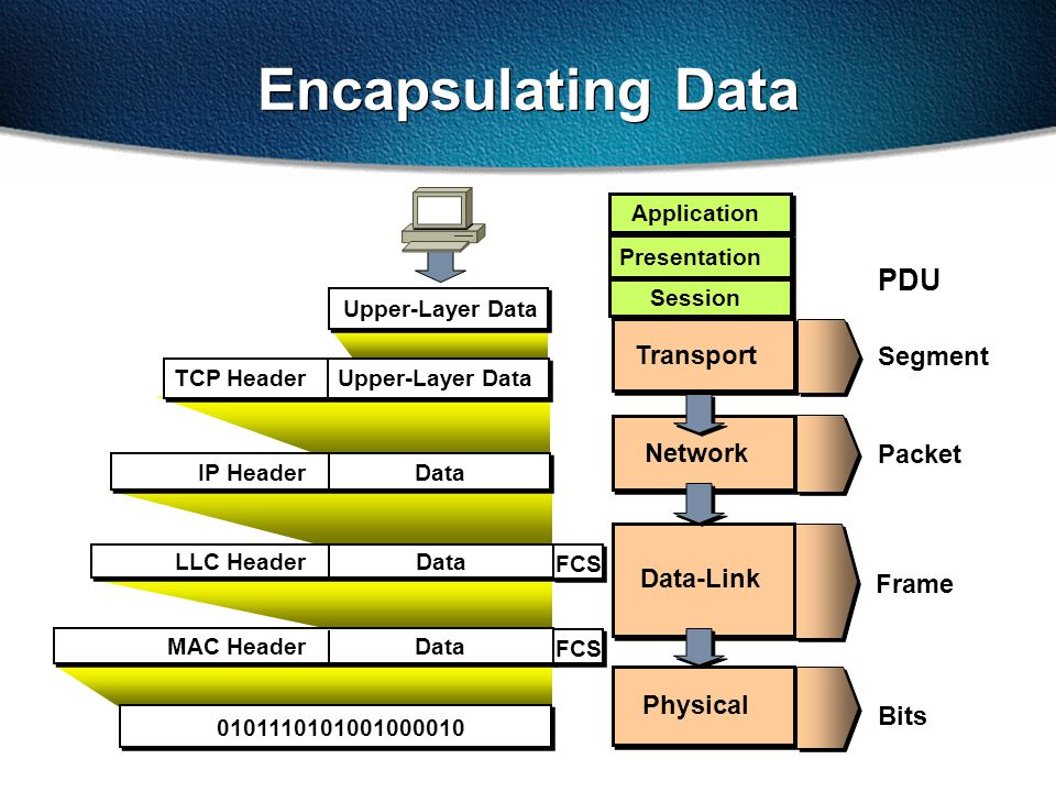 Encapsulating Data Transport Data-Link Physical Network Upper-Layer Data TCP Header DataIP Header DataLLC Header 0101110101001000010 DataMAC Header Presentation Application Session Segment Packet Bits Frame PDU FCS