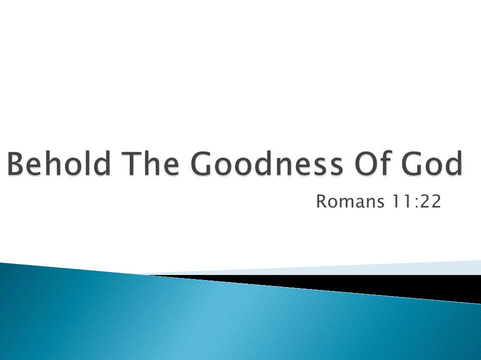 Romans 11:22