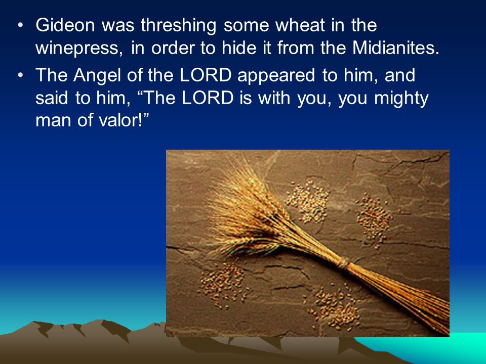 Gideon was threshing some wheat in the winepress, in order to hide it from the Midianites.