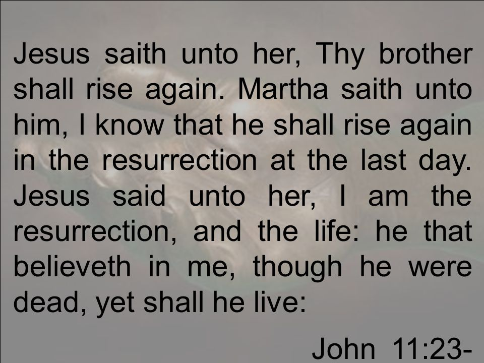 Jesus saith unto her, Thy brother shall rise again.