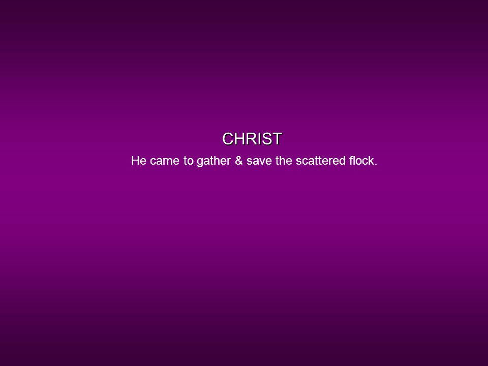 CHRIST He came to gather & save the scattered flock.