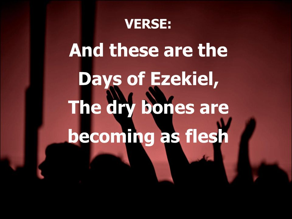 VERSE: And these are the Days of Ezekiel, The dry bones are becoming as flesh