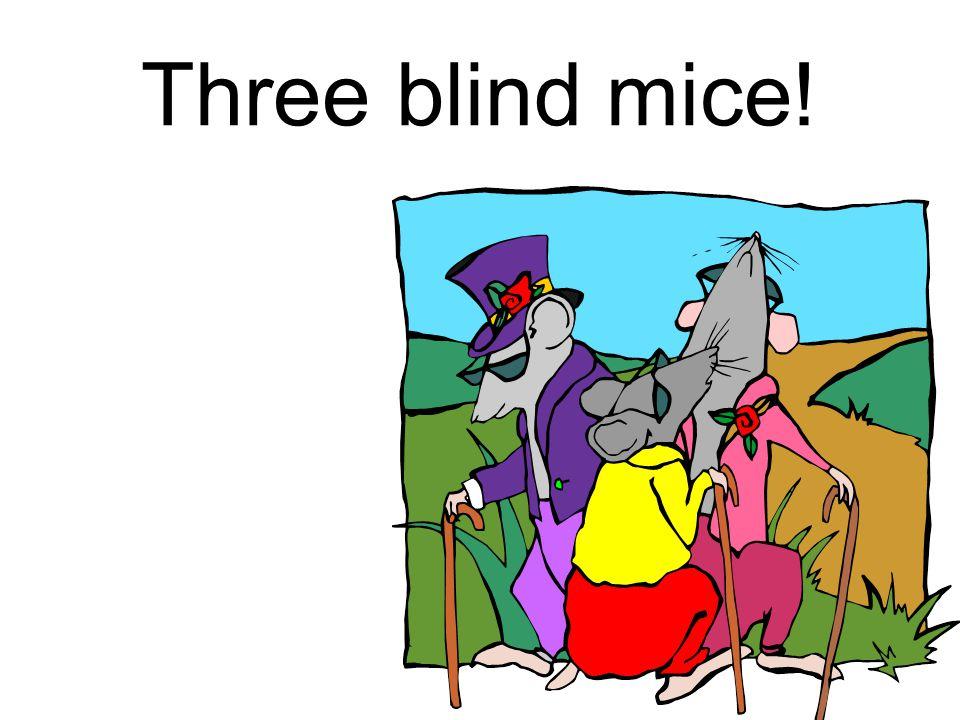 Three blind mice!