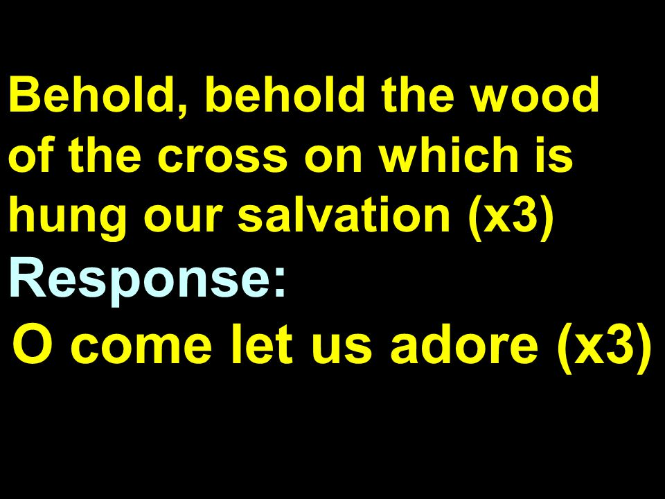 Behold, behold the wood of the cross on which is hung our salvation (x3) Response: O come let us adore (x3)