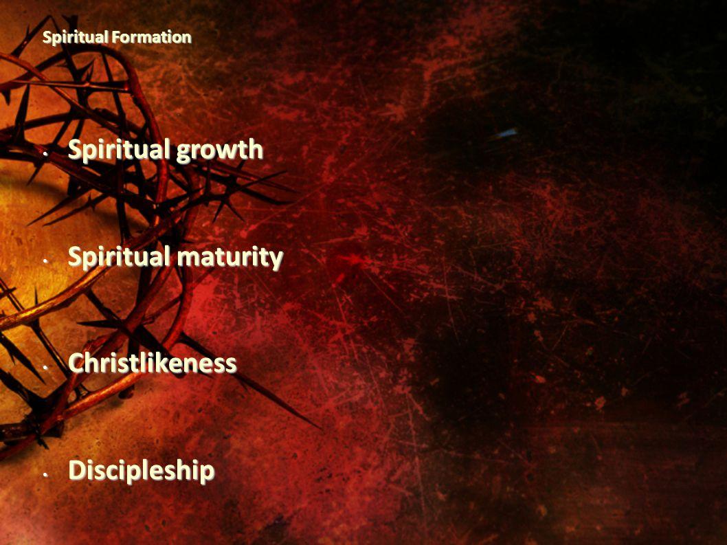 Spiritual Formation Spiritual growth Spiritual growth Spiritual maturity Spiritual maturity Christlikeness Christlikeness Discipleship Discipleship