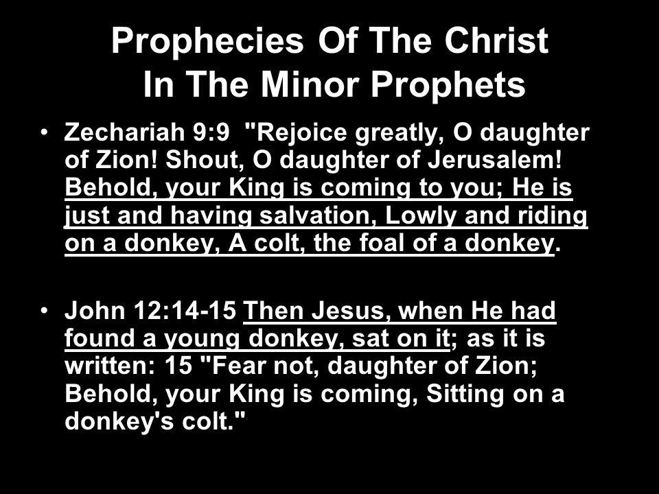 Prophecies Of The Christ In The Minor Prophets Zechariah 9:9