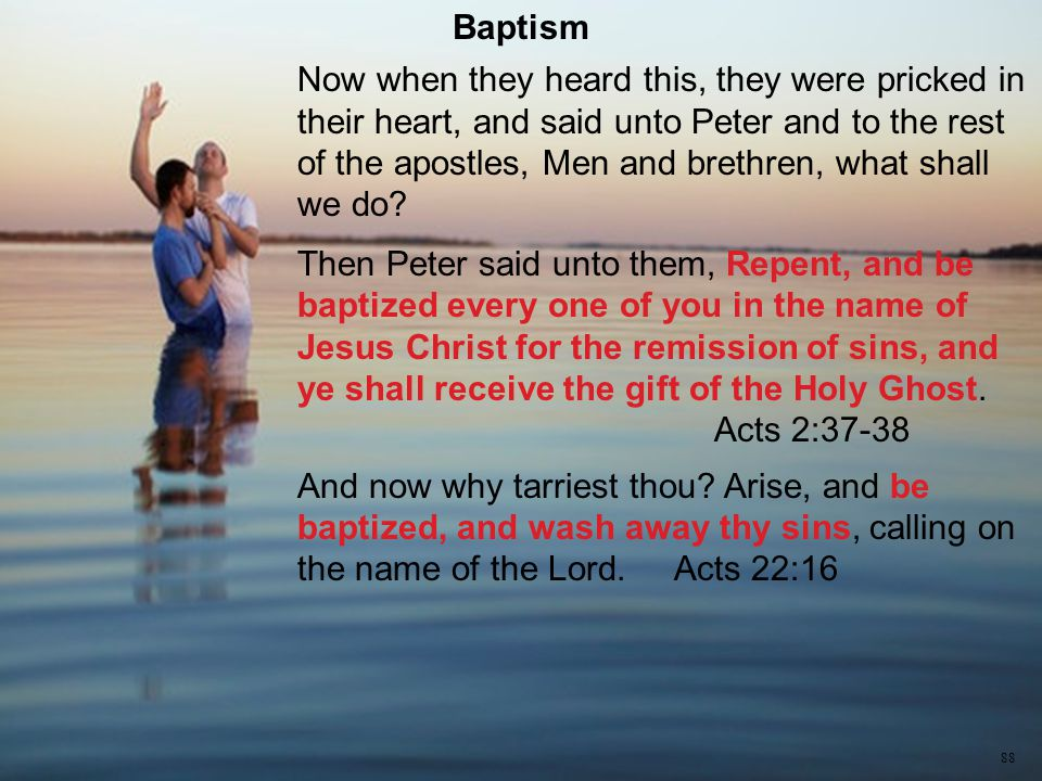 Now when they heard this, they were pricked in their heart, and said unto Peter and to the rest of the apostles, Men and brethren, what shall we do.