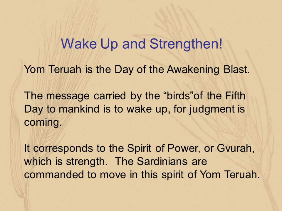 """Wake Up and Strengthen! Yom Teruah is the Day of the Awakening Blast. The message carried by the """"birds""""of the Fifth Day to mankind is to wake up, for"""