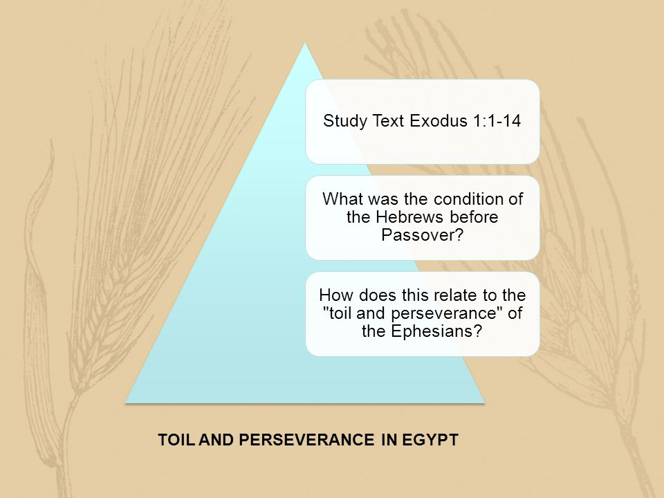 Study Text Exodus 1:1-14 What was the condition of the Hebrews before Passover? How does this relate to the