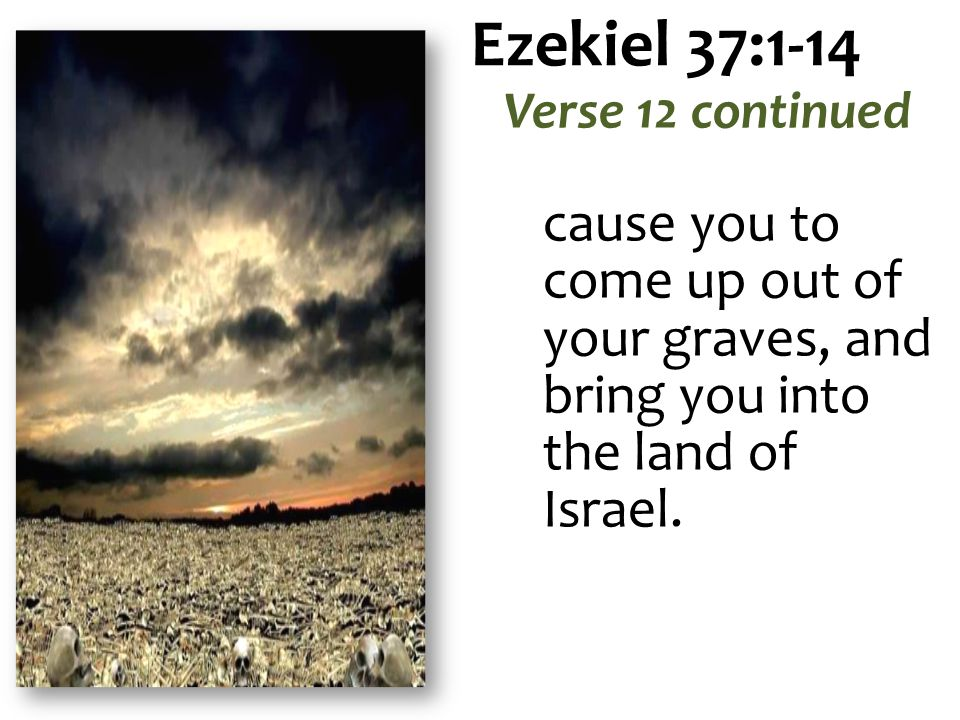 Ezekiel 37:1-14 Verse 12 continued cause you to come up out of your graves, and bring you into the land of Israel.