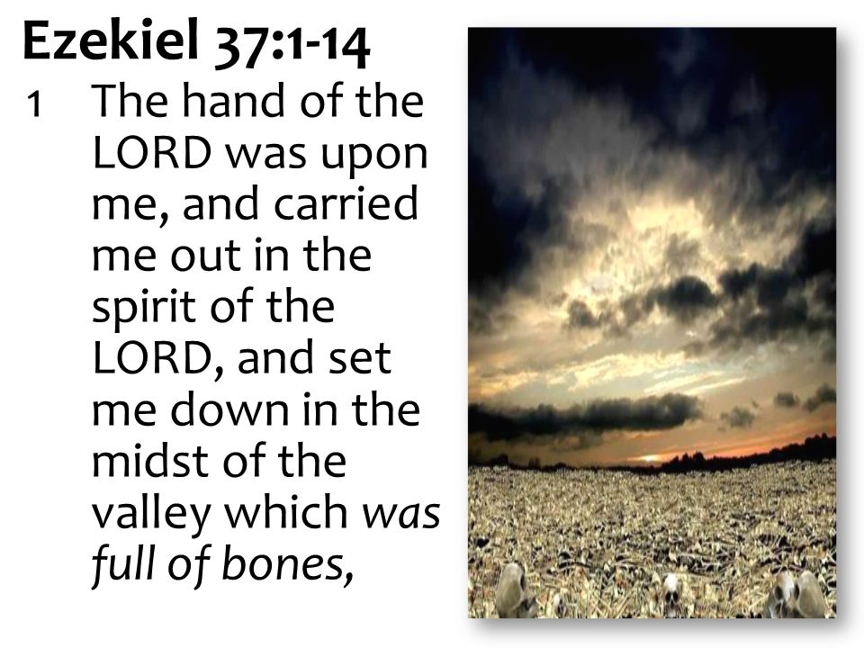 Ezekiel 37:1-14 1The hand of the LORD was upon me, and carried me out in the spirit of the LORD, and set me down in the midst of the valley which was full of bones,
