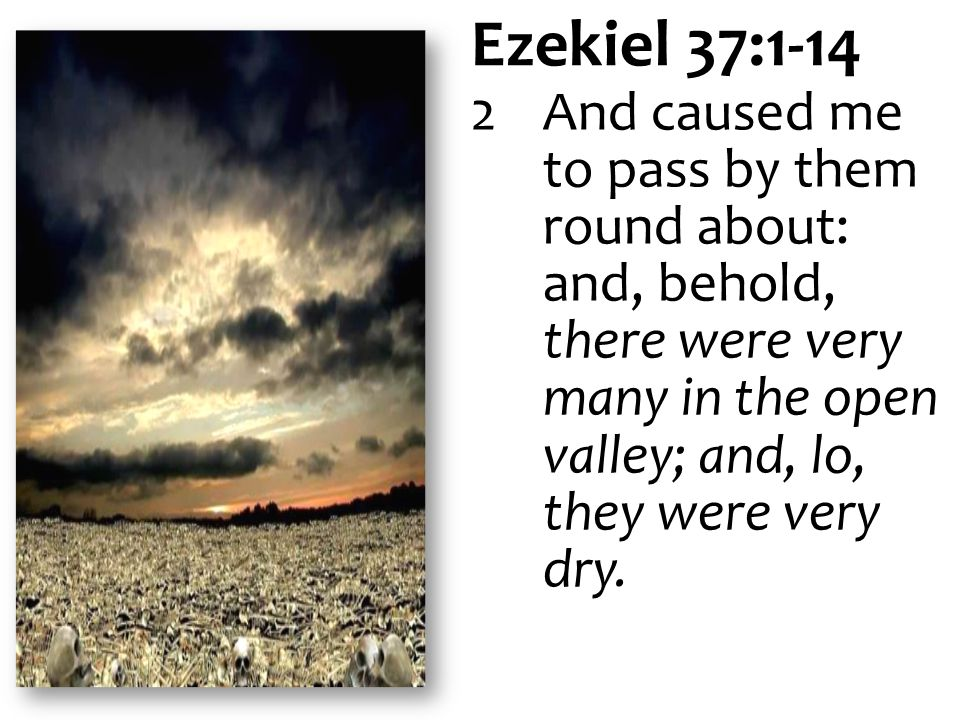 Ezekiel 37:1-14 2And caused me to pass by them round about: and, behold, there were very many in the open valley; and, lo, they were very dry.