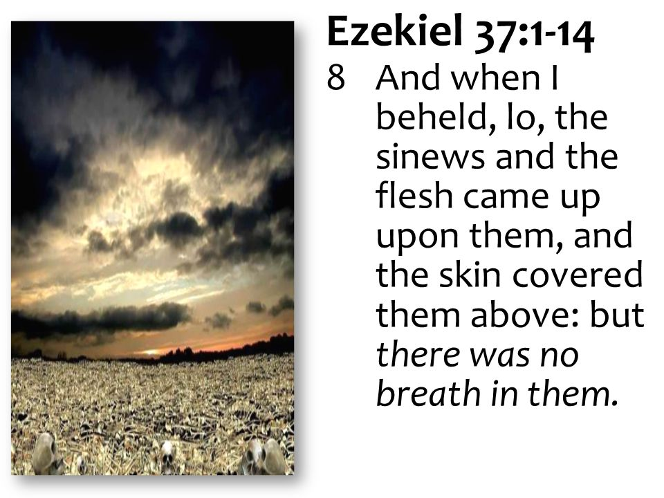 Ezekiel 37:1-14 8And when I beheld, lo, the sinews and the flesh came up upon them, and the skin covered them above: but there was no breath in them.