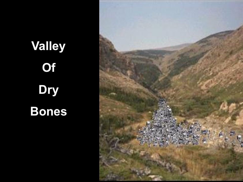3 Valley Of Dry Bones