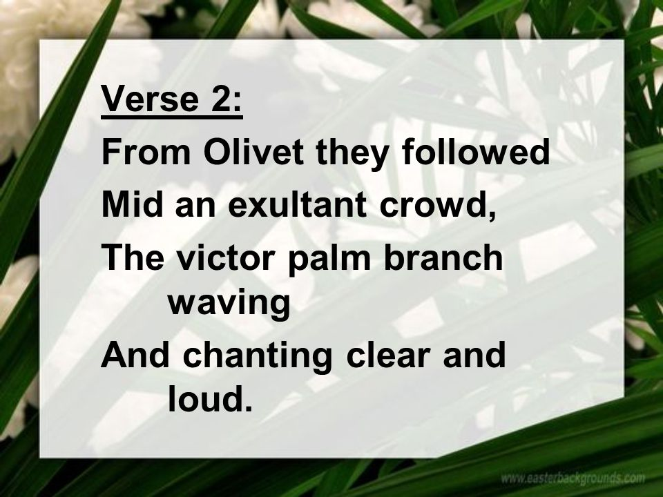 Verse 2: From Olivet they followed Mid an exultant crowd, The victor palm branch waving And chanting clear and loud.