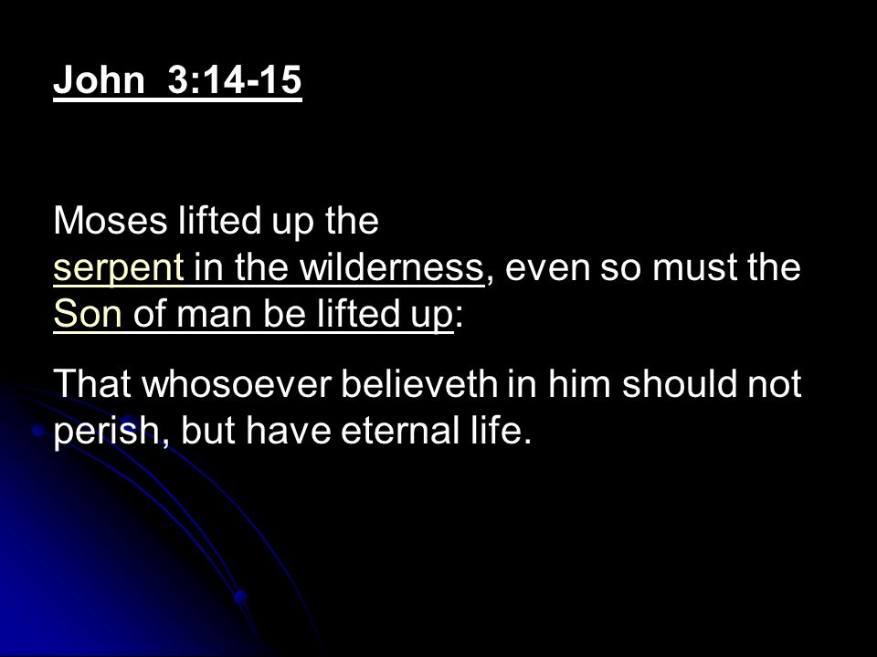 John 3:14-15 Moses lifted up the serpent in the wilderness, even so must the Son of man be lifted up: serpent Son That whosoever believeth in him should not perish, but have eternal life.