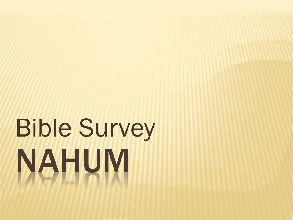 Bible Survey