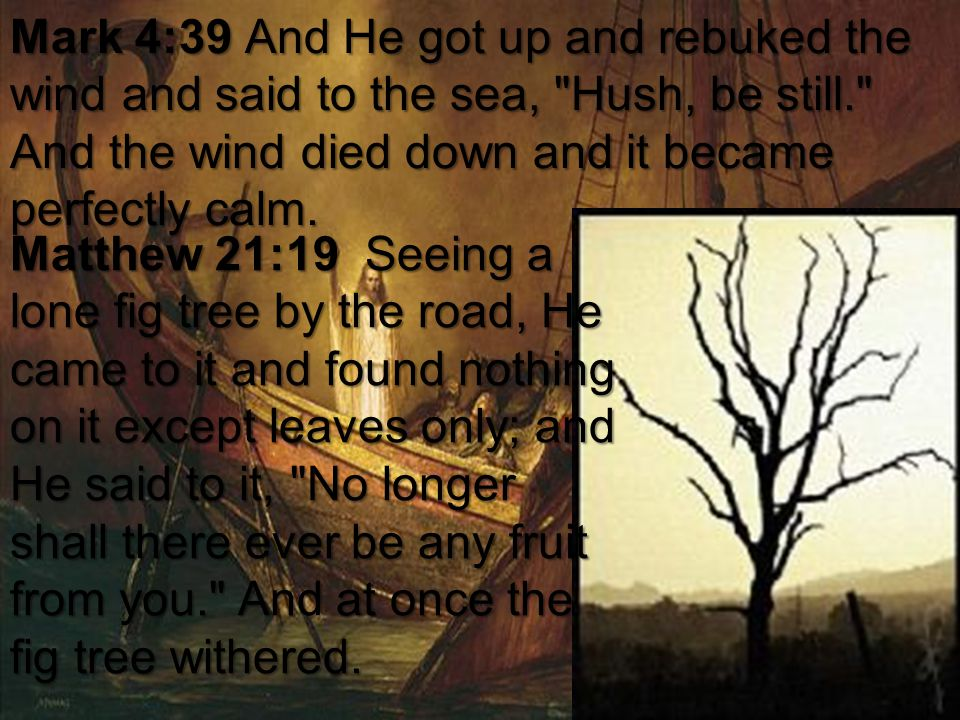 Mark 4:39 And He got up and rebuked the wind and said to the sea,