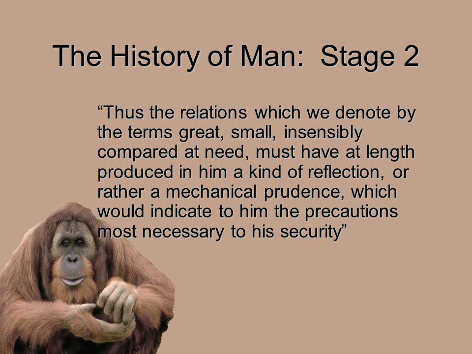 The History of Man: Stage 2 Thus the relations which we denote by the terms great, small, insensibly compared at need, must have at length produced in him a kind of reflection, or rather a mechanical prudence, which would indicate to him the precautions most necessary to his security