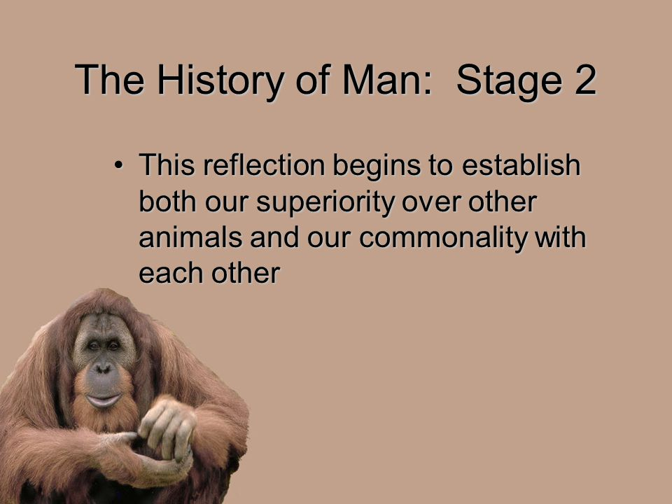 The History of Man: Stage 2 This reflection begins to establish both our superiority over other animals and our commonality with each otherThis reflection begins to establish both our superiority over other animals and our commonality with each other