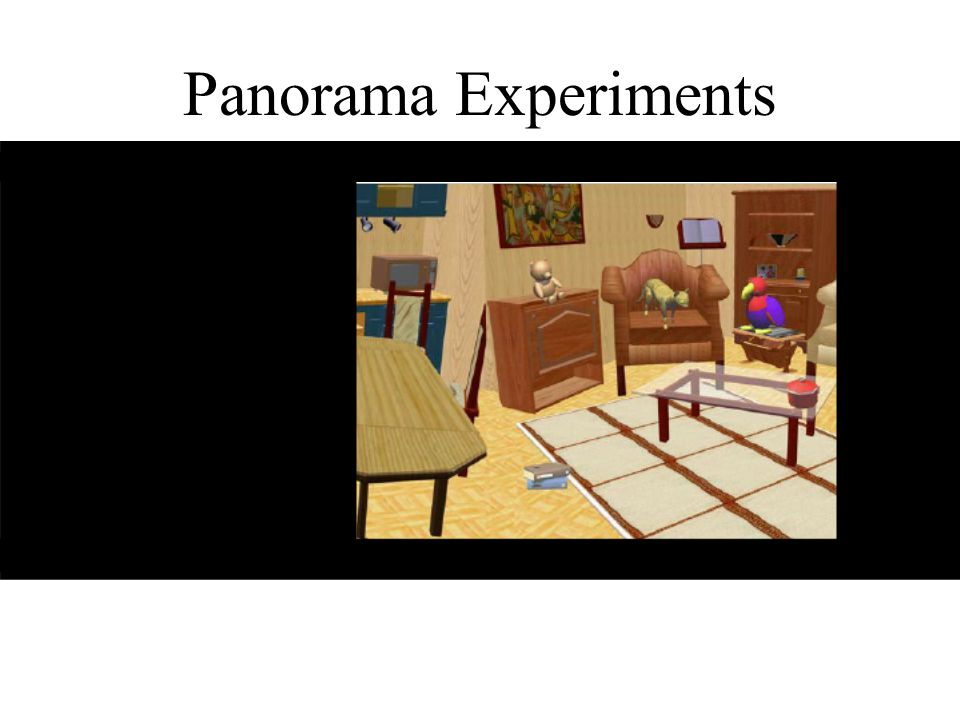 Panorama Experiments