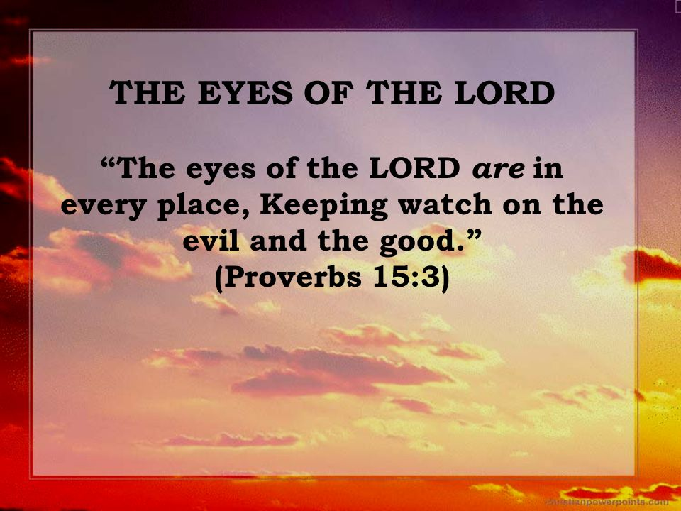 "THE EYES OF THE LORD ""The eyes of the LORD are in every place, Keeping watch on the evil and the good."" (Proverbs 15:3)"