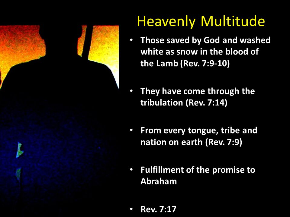 Heavenly Multitude Those saved by God and washed white as snow in the blood of the Lamb (Rev.
