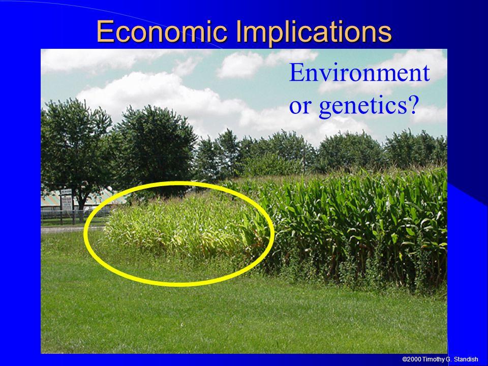 ©2000 Timothy G. Standish Economic Implications Environment or genetics?
