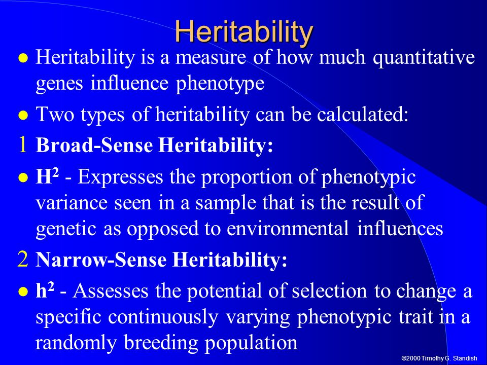 ©2000 Timothy G. StandishHeritability Heritability is a measure of how much quantitative genes influence phenotype Two types of heritability can be ca