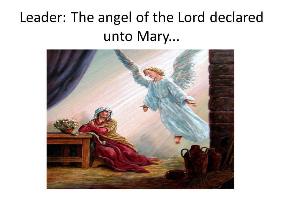 Leader: The angel of the Lord declared unto Mary...