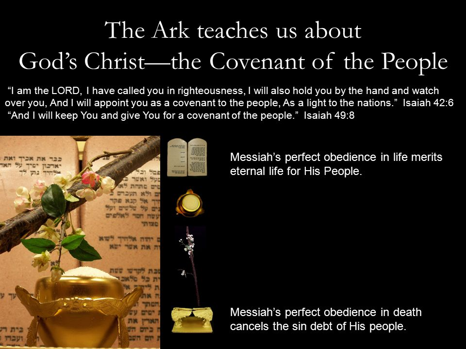 The Ark teaches us about God's Christ—the Covenant of the People Messiah's perfect obedience in life merits eternal life for His People.