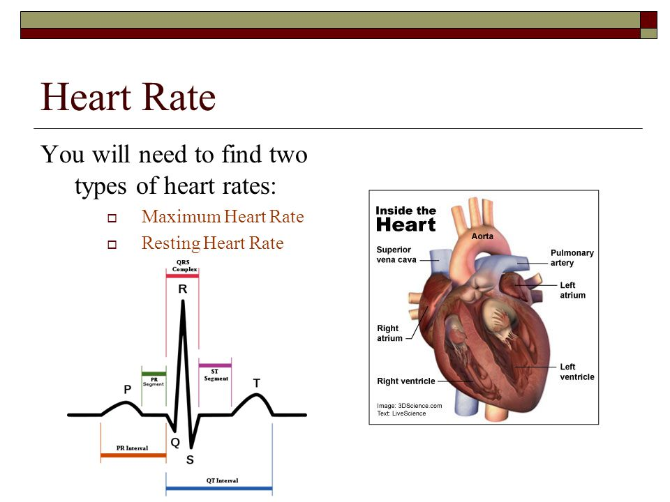 Target Heart Rate (THR)  The heart rate at which one aim's to exercise  Knowing your target heart rate is necessary to maintain a safe, effective pr