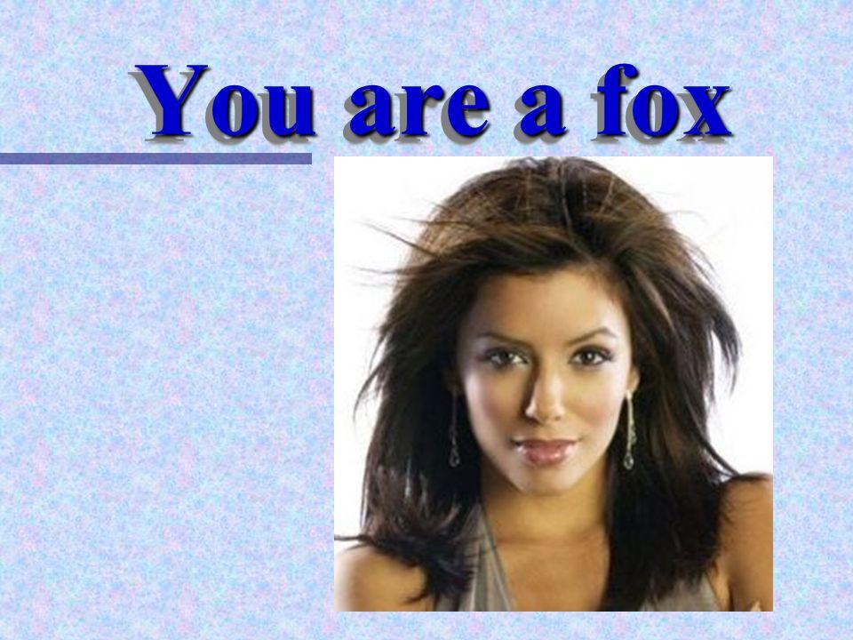 Professor Pen You are a fox