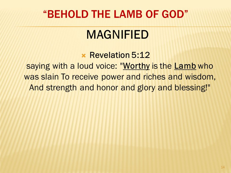 """BEHOLD THE LAMB OF GOD""  Revelation 5:12 saying with a loud voice:"