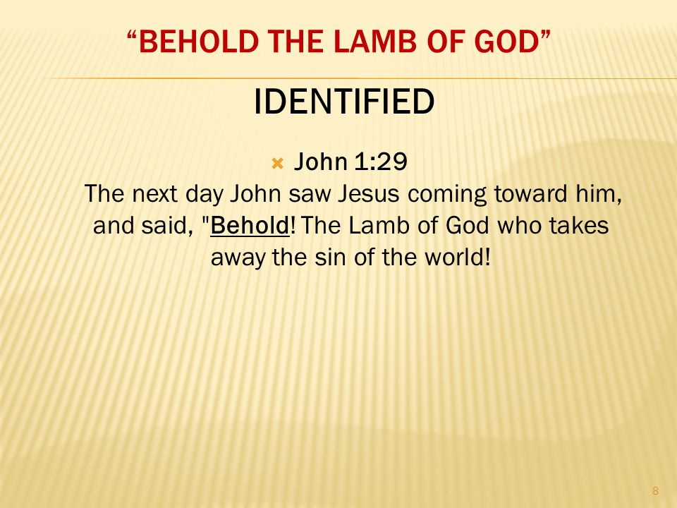 """BEHOLD THE LAMB OF GOD""  John 1:29 The next day John saw Jesus coming toward him, and said,"