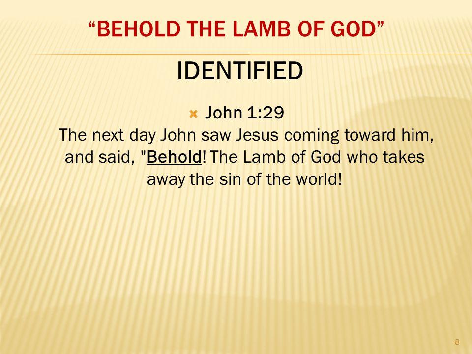 BEHOLD THE LAMB OF GOD  John 1:29 The next day John saw Jesus coming toward him, and said, Behold.