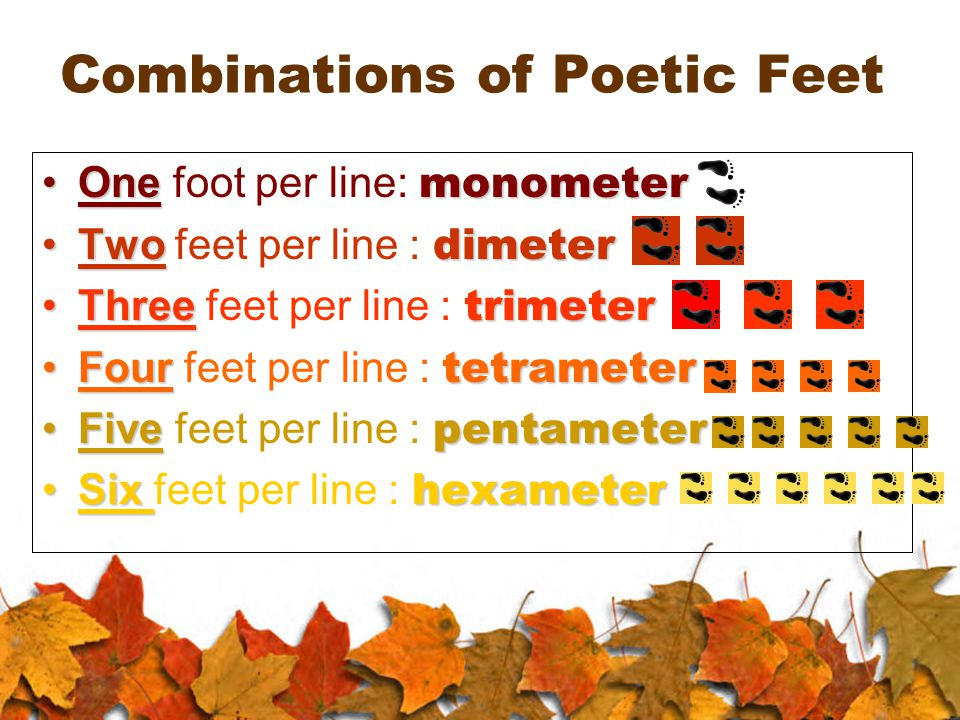 Combinations of Poetic Feet One monometerOne foot per line: monometer Two dimeterTwo feet per line : dimeter Three trimeterThree feet per line : trimeter Four tetrameterFour feet per line : tetrameter Five pentameterFive feet per line : pentameter Six hexameterSix feet per line : hexameter