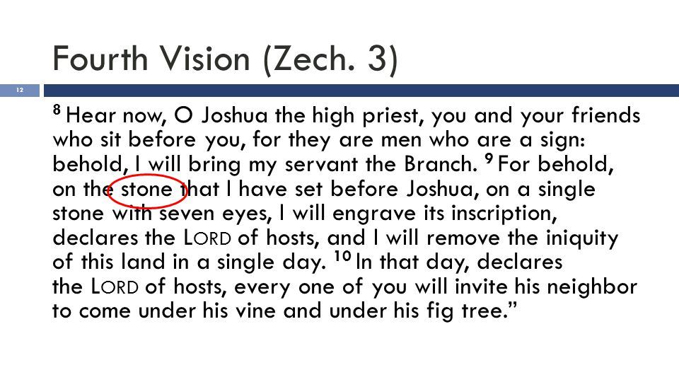 Fourth Vision (Zech. 3) 12 8 Hear now, O Joshua the high priest, you and your friends who sit before you, for they are men who are a sign: behold, I w