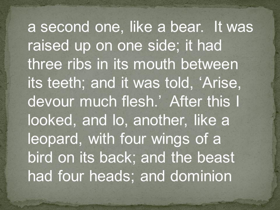 a second one, like a bear.