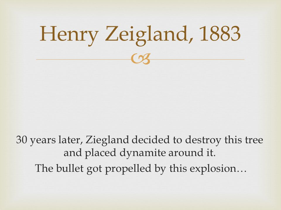  30 years later, Ziegland decided to destroy this tree and placed dynamite around it.